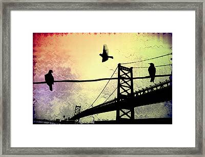 Birds Eye View Framed Print by Bill Cannon