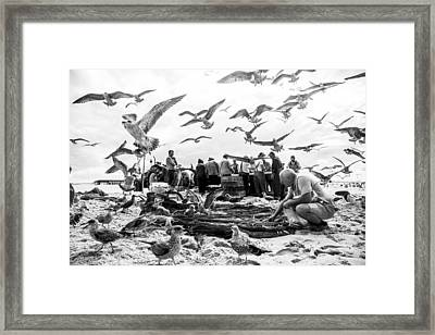 Birds Framed Print by Liesbeth Van Der Werf