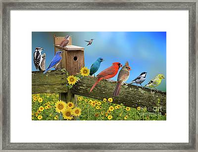 Birds Of A Feather Framed Print by Bonnie Barry