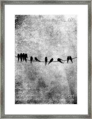 Birds On A Wire Framed Print by Tina Lavoie