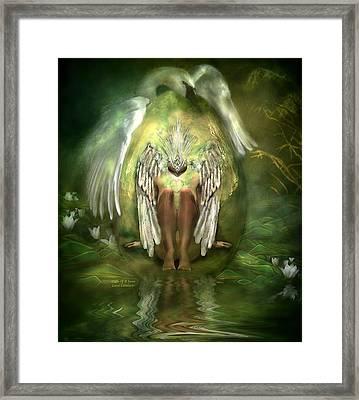 Birth Of A Swan Framed Print by Carol Cavalaris