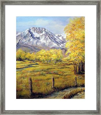 Bishop In The Fall Framed Print by Donna Tucker