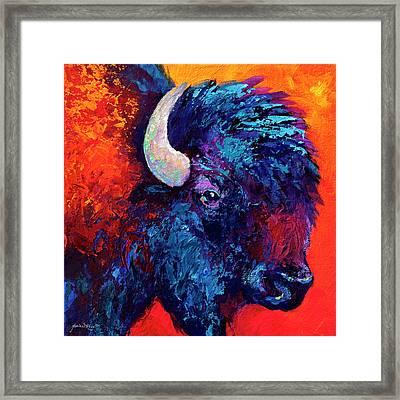 Bison Head Color Study II Framed Print by Marion Rose
