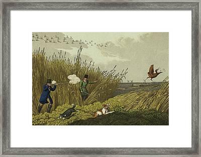 Bittern Shooting Framed Print by Henry Thomas Alken