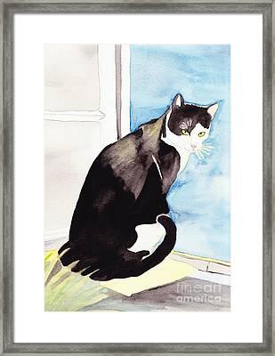 Black And White Cat Framed Print by Michaela Bautz