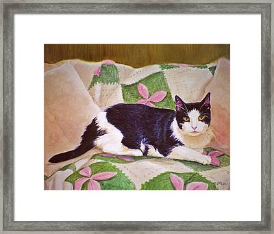 Black And White Cat On Couch Framed Print by Phyllis Tarlow