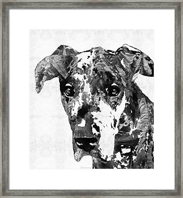 Black And White Great Dane Art Dog By Sharon Cummings Framed Print by Sharon Cummings