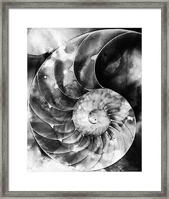 Black And White Nautilus Shell By Sharon Cummings Framed Print by Sharon Cummings