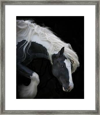 Black And White Study V Framed Print by Terry Kirkland Cook