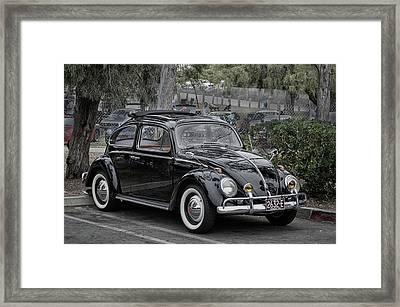 Black Bug Framed Print by Bill Dutting