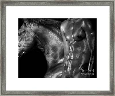 Black Horse  Framed Print by Mark Ashkenazi