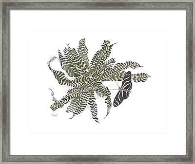 Black Magic Framed Print by Penrith Goff