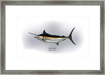Black Marlin Framed Print by Ralph Martens
