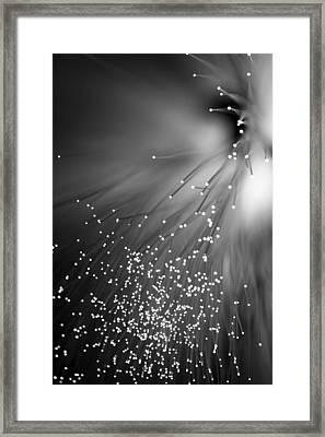 Black Night Framed Print by Dazzle Zazz
