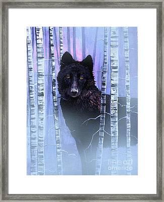 Black Prince Framed Print by Robert Foster