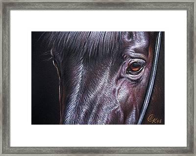 Black Stallion Framed Print by Elena Kolotusha