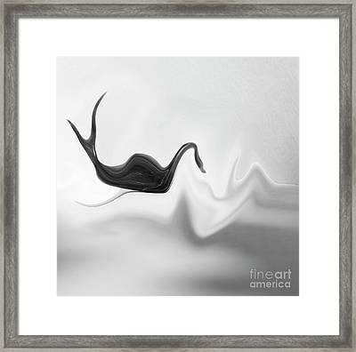 Black Swan In Turbulent Waters Framed Print by Skip Willits