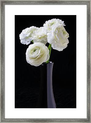 Black Vase With White Ranunculus Framed Print by Garry Gay