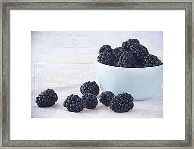 Blackberries Framed Print by Cindi Ressler