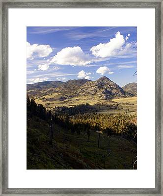 Blacktail Road Landscape Framed Print by Marty Koch