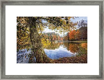 Blaze Of Color Framed Print by Debra and Dave Vanderlaan