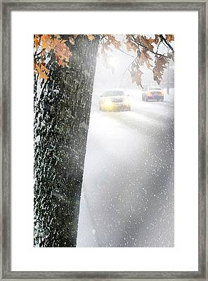 Blizzard Forcast Framed Print by Diana Angstadt