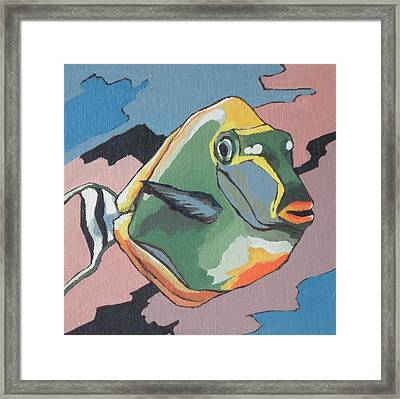 Blond Naso Tang Framed Print by Sandy Tracey