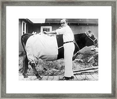 Bloomers For Cows Framed Print by Underwood Archives