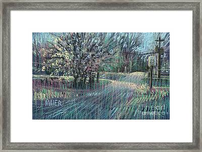 Blooming Bradford Framed Print by Donald Maier
