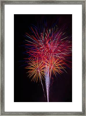 Blooming Fireworks Framed Print by Garry Gay