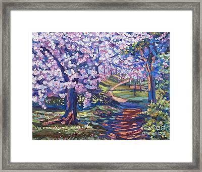 Blossom Season - Plein Air Framed Print by David Lloyd Glover