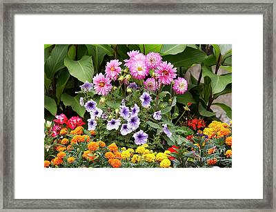 Blossoming Flowers Framed Print by Michal Boubin
