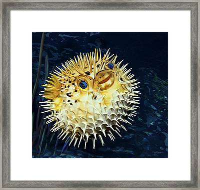 Blowfish Framed Print by Thanh Thuy Nguyen
