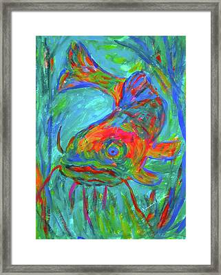 Blue Fin Cat Stage One Framed Print by Kendall Kessler