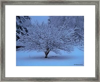 Blue Christmas Framed Print by Betty Northcutt