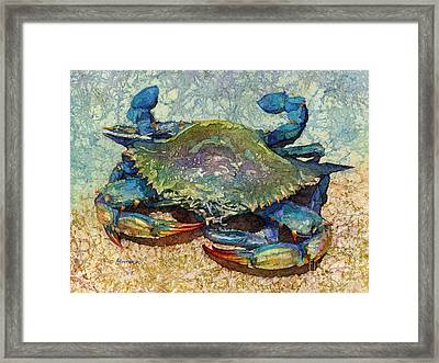 Blue Crab Framed Print by Hailey E Herrera