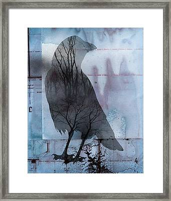 Blue Crow Nature Framed Print by Gothicolors Donna Snyder