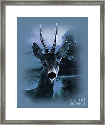 Blue Deer  Framed Print by Gull G