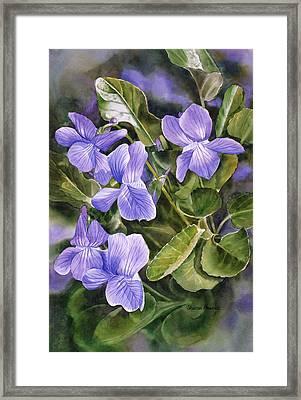 Blue Dog Violets Framed Print by Sharon Freeman