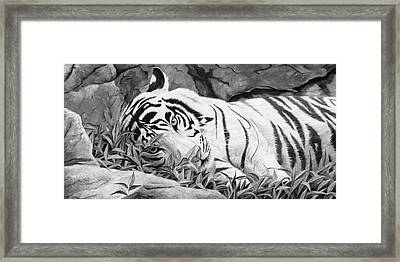 Blue Eyes - Black And White Framed Print by Lucie Bilodeau