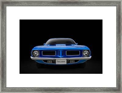 Blue Fish Framed Print by Douglas Pittman