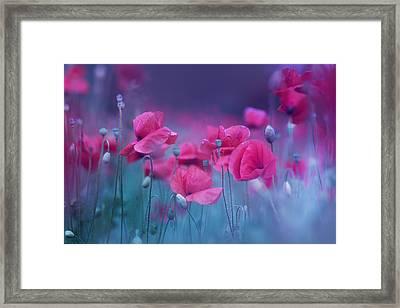 Blue Garden Poppies Framed Print by Magda  Bognar