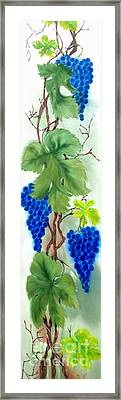 Blue Grape. Framed Print by Angelina Roeders