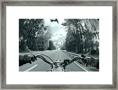 Blue Harley Framed Print by Micah May