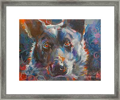 Blue Heeler Framed Print by Kimberly Santini