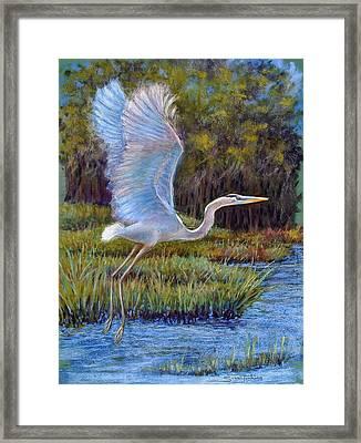 Blue Heron In Flight Framed Print by Susan Jenkins