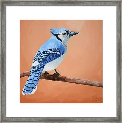 Blue Jay Framed Print by Lesley Alexander