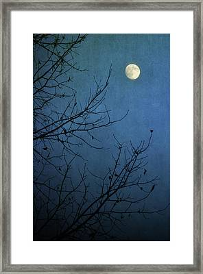 Blue Moon Framed Print by Susan McDougall Photography