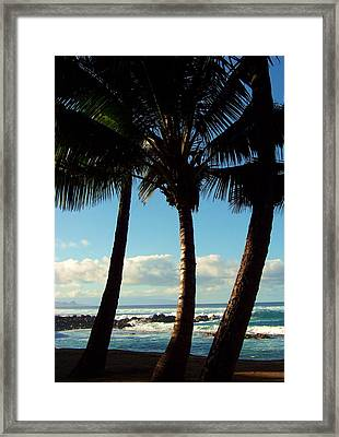 Blue Palms Framed Print by Karen Wiles