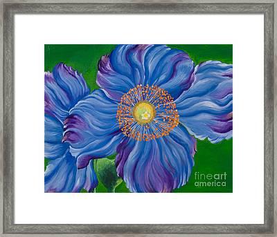 Blue Poppies Framed Print by Sweta Prasad
